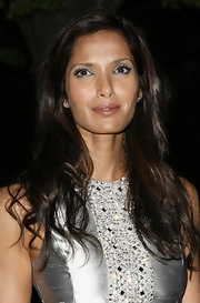 Padma Lakshmi matched her eyeshadow to her silver dress.