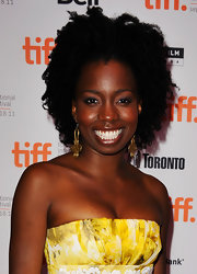 Adepero Oduye sported a high-volume curly hairstyle at the TIFF premiere of 'Pariah.'