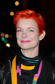 Sandy Powell attended the Hollywood Costume gala dinner wearing a bright red fauxhawk.