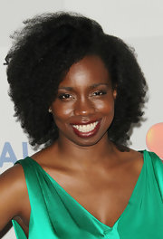 Adepero Oduye sported a voluminous curly 'do at the NBCUniversal Golden Globes after-party.